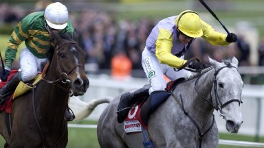 Great grey: novice Iris's Gift toppled the mighty Baracouda in the 2004 Stayers' Hurdle