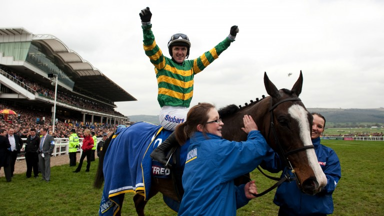 Gold glory: Synchronised progressed from high-class handicapper to Gold Cup hero