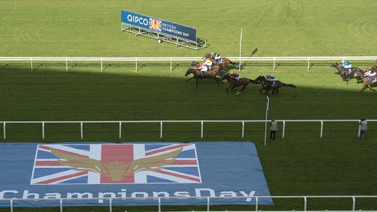 Qipco Champions Day has become an afternoon of racing to rival any other anywhere in the world