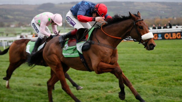 Old Guard: former International winner is one of two runners for Paul Nicholls in the Listed Hurdle (4.20)