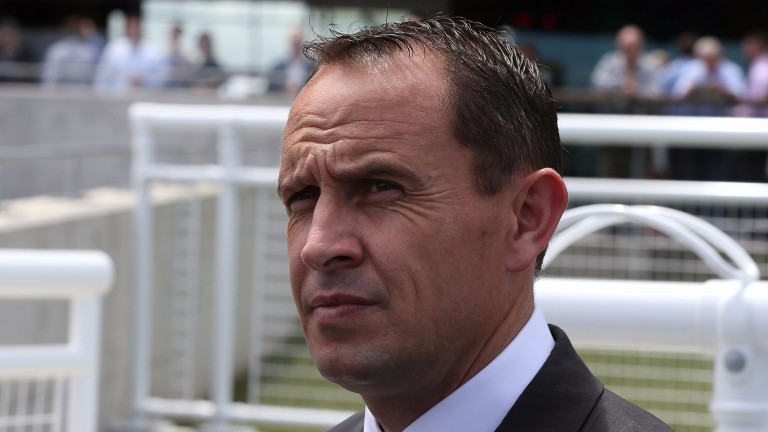Chris Waller: fielded all but the winner in a nine-runner handicap at Randwick on Saturday