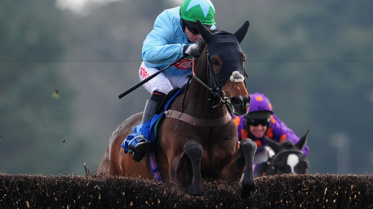 Henryville: looks the type to tackle the Summer Classic at Uttoxeter