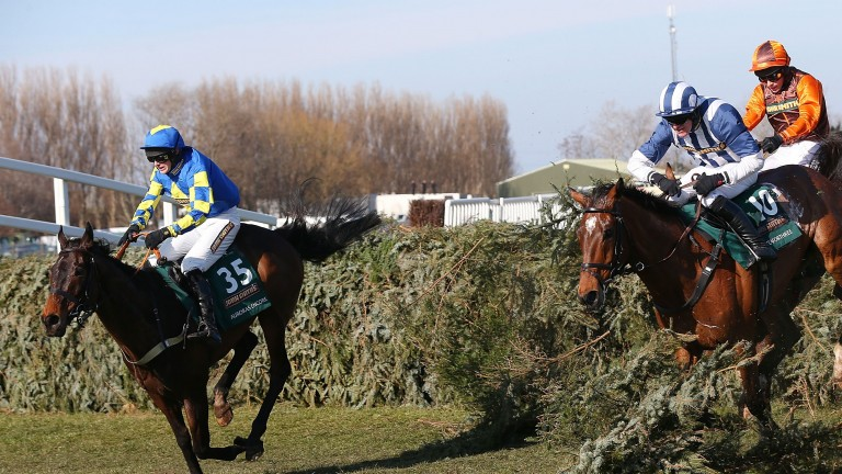 Auroras Encore leads the field en route to victory in the 2013 Grand National