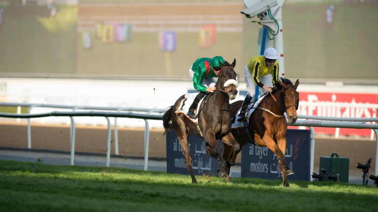 Vazirabad (Christophe Soumillon, nearside) beats Big Orange in the Dubai Gold Cup in 2016.