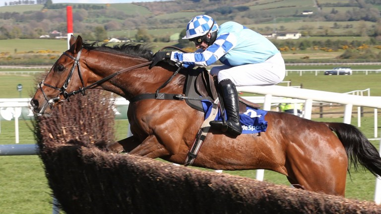 God's Own: could switch to Ascot on Saturday in search of better ground