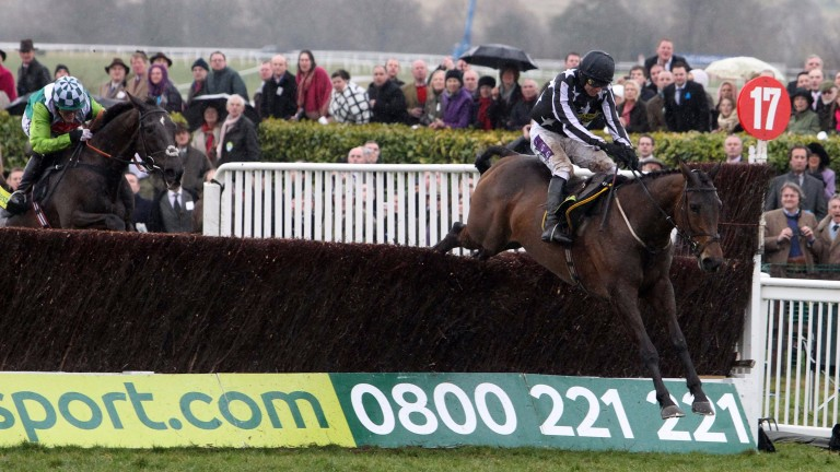 Gatecrashing the party: Imperial Commander jumps clear of Denman to win the Cheltenham Gold Cup in 2010