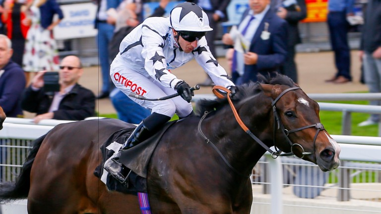 Raising Sand: returning to Ascot for a race he won in 2019
