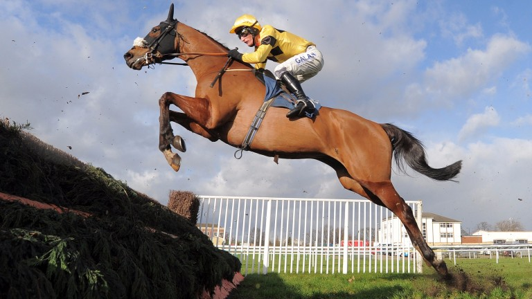 Fox Norton: Queen Mother Champion Chase contender has been raised to 161