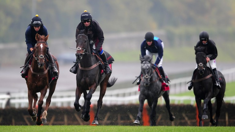Big guns: Aux Ptits Soins (grey) and Zubayr stretch their legs behind Silviniaco Conti and Ptit Zig