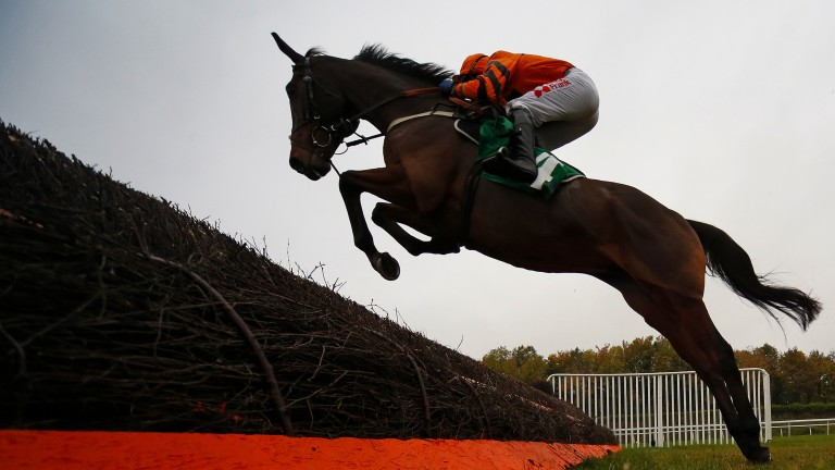 Seeing a stride: Thistlecrack makes the perfect shape over a fence in a pleasing chasing debut