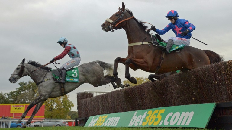 Jonathan Moore is confident of confirming superiority over Cue Card in the Betfair Chase aboard Irish Cavalier (left)