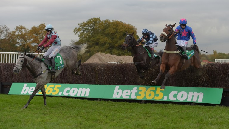Irish Cavalier leads Cue Card (nearside) and Menorah in Saturday's bet365 Charlie hall Chase  at Wetherby