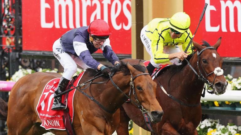 Tony Martin's Heartbreak City (right) is beaten a head by Almandin in the Melbourne Cup