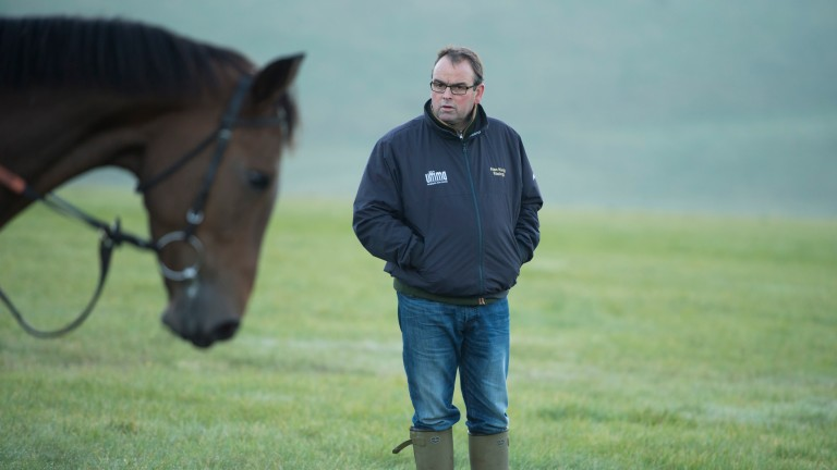 Alan King: has been saving Annacotty for Cheltenham