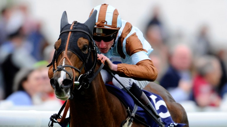 Caspian Prince: won the Epsom Dash for Carroll in 2014