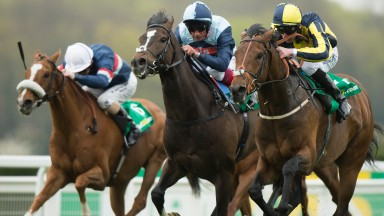 My Dream Boat (right) returns to Sandown in a bid to repeat last year's victory in the Gordon Richards Stakes