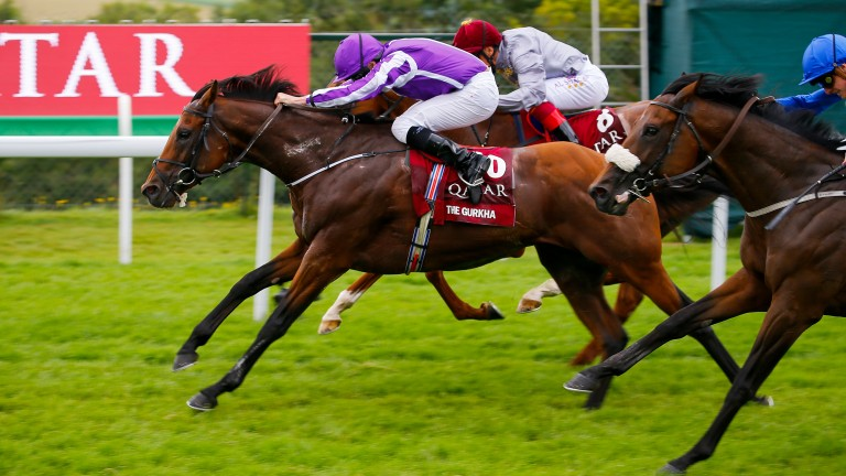 The Gurkha: won the Group 1 Sussex Stakes earlier this year