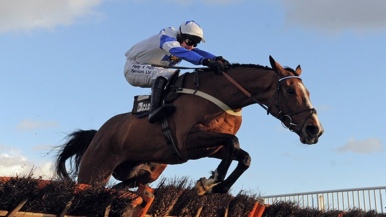 Barters Hill: can make the perfect start over fences