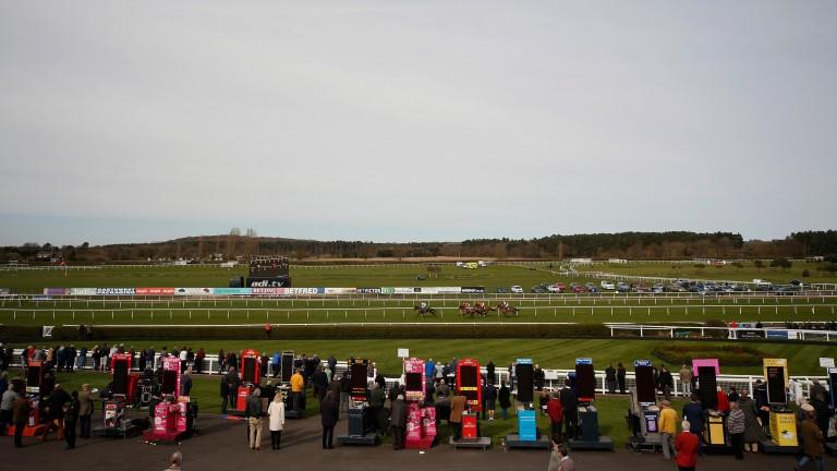Market Rasen: racing on Thursday