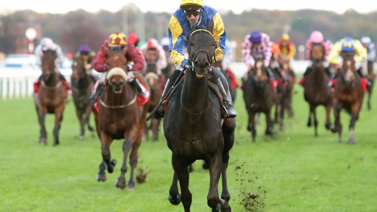 Litigant (George Baker) turns last year's Betfred November Handicap into a rout