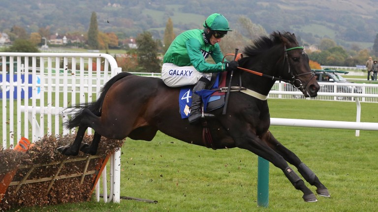 Sceau Royal: takes his first steps over fences at Warwick