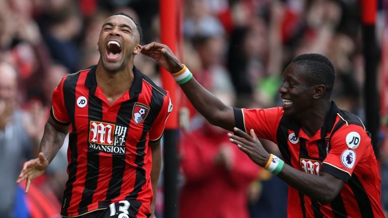 Bournemouth striker Callum Wilson (left) celebrates his goal against West Brom