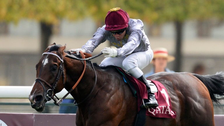 Ectot and Gregory Benoist head for victory in the 20114 Prix Niel at Longchamp