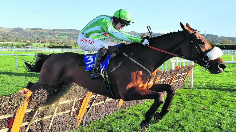 Shantou Village: in a much better place this year this term according to his trainer