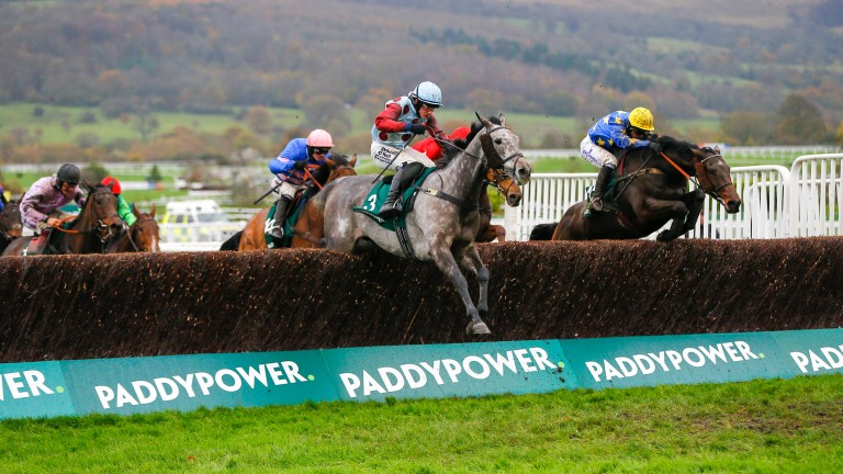 Ian Popham on Annacotty (far side) at Cheltenham