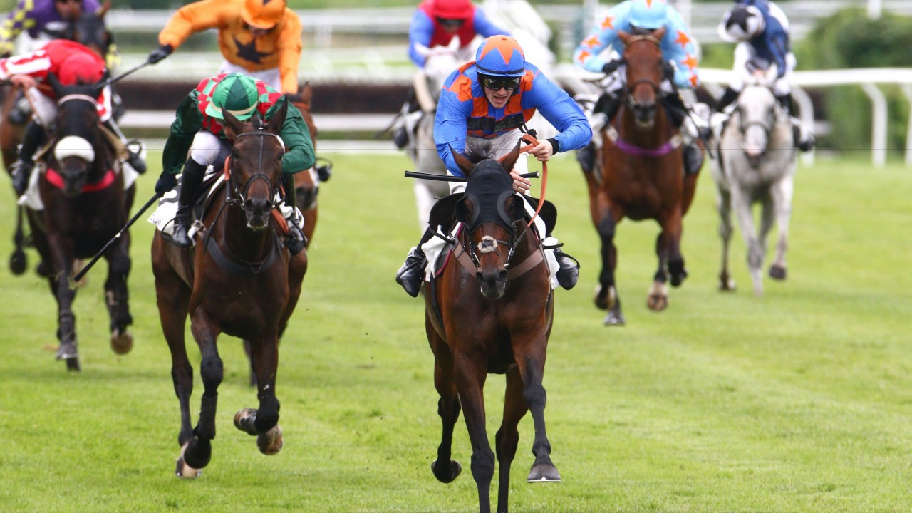 Image result for Betting On Horse Races