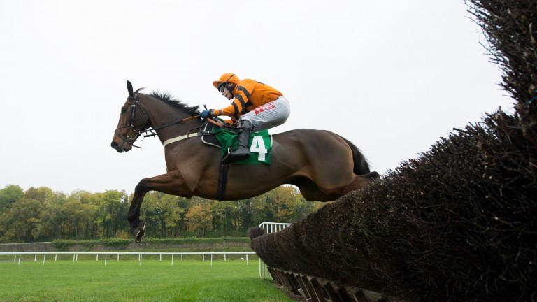 Thistlecrack: made an impressive chasing debut at Chepstow last month
