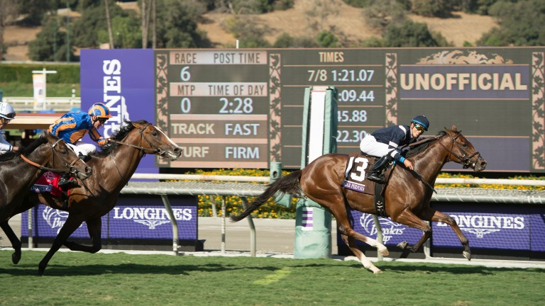 Oscar Performance (Jose Ortiz) wins the Juvenile Turf at Santa Anita, Arcadia, California 4.11.16 Pic: Edward Whitaker