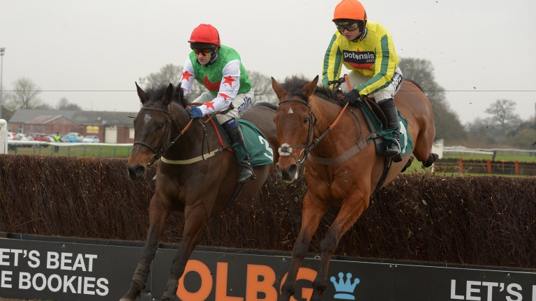 Vivaldi Collonges (right): later options include the Hennessy and a Listed race at Aintree