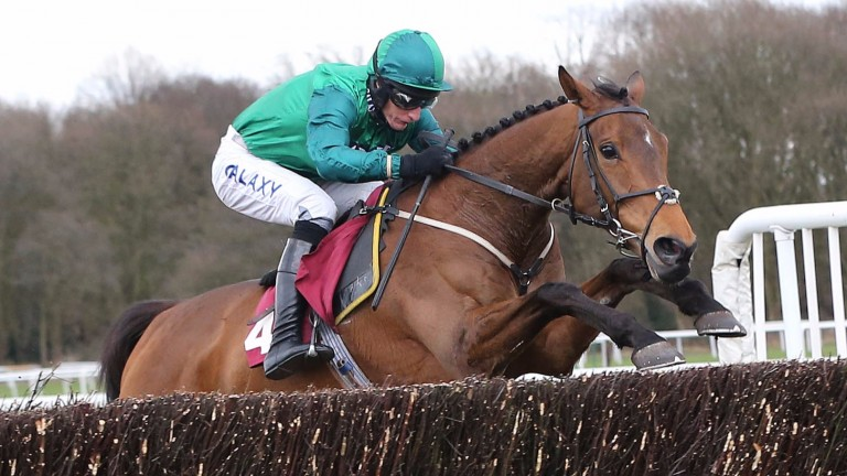 Ballybolley: in fine form after wins at Wetherby and Huntingdon last month