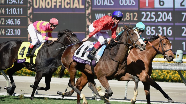 The thrilling success of Queen's Trust at Santa Anita last year quickened her owners' interest in shopping at Keeneland