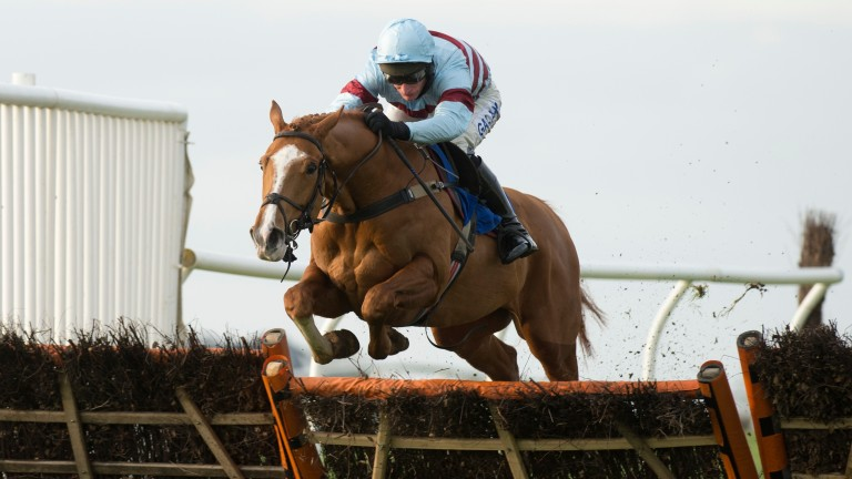 The winner Floresco (Daryl Jacob) jumps the final flight in the 2m handicap hurdleWincanton 21.1.16 Pic: Edward Whitaker