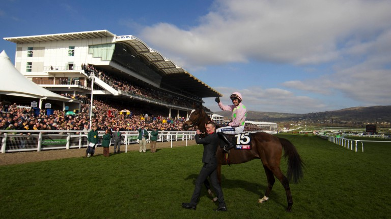 Supreme success: Ruby Walsh celebrates after Vautour's first Cheltenham Festival success in the Supreme Novices' Hurdle