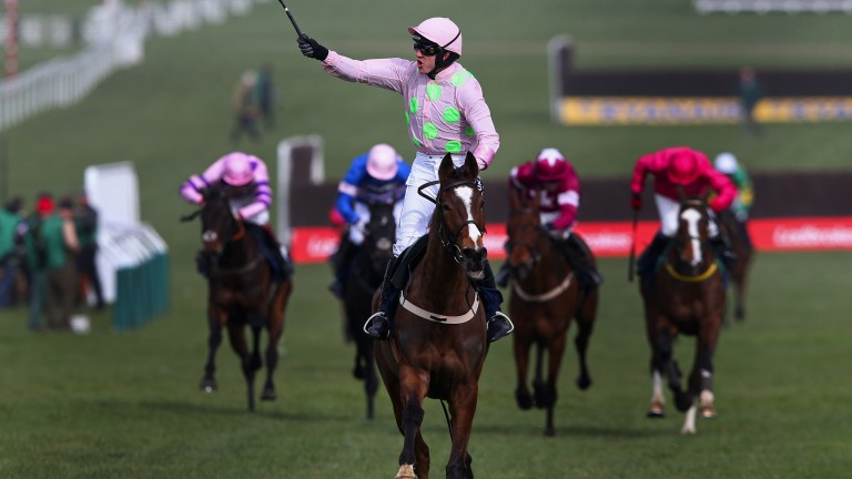 Vautour secured his second Festival win when trouncing his rivals to win the JLT Chase in 2015