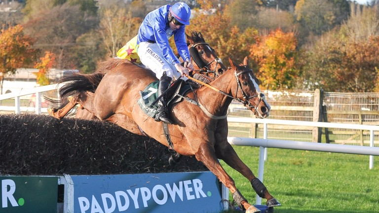 Raz De Maree and Ger Fox clear the last to land the Paddy Power Cork Grand National
