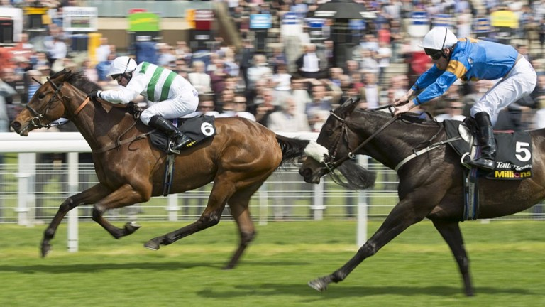 Madame Chiang (left): daughter of Archipenko lands the Musidora Stakes