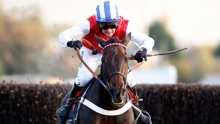 Josses Hill and Nico de Boinville clear the last in Kempton's graduation chase