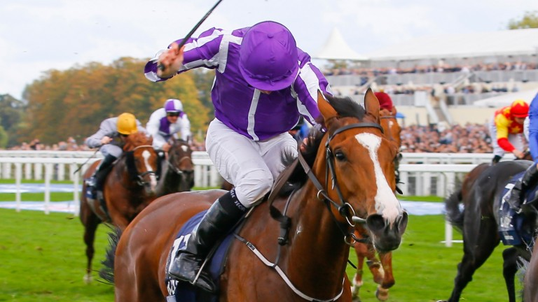Minding: honoured in two categories at the Cartier Racing Awards on Tuesday