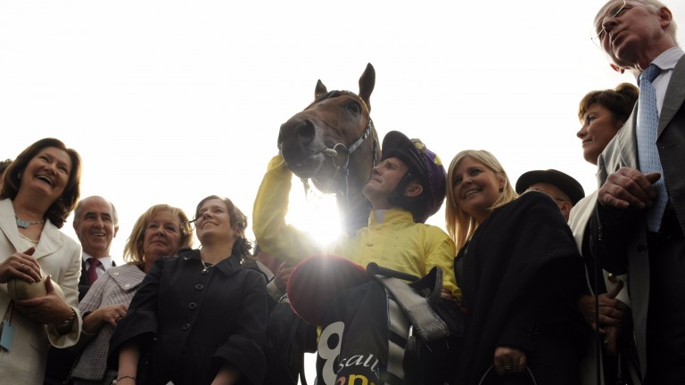 Sea The Stars and his connections following his marvellous display in the Irish Champion Stakes at Leopardstown