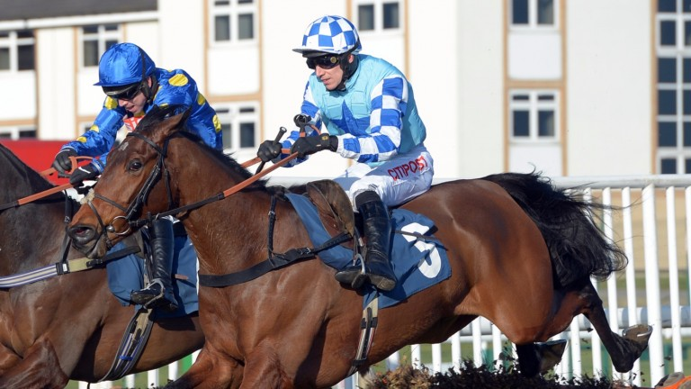 Double Shuffle: Tom George's hope is third-favourite for the BetVictor Gold Cup