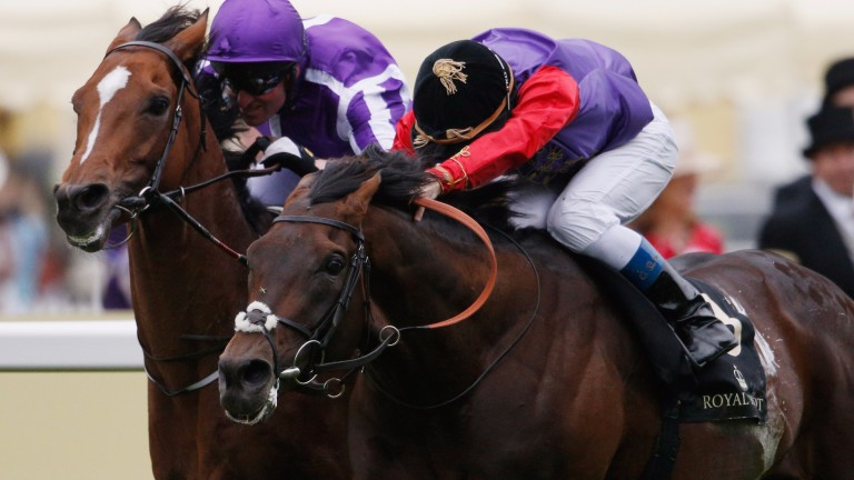 Dartmouth: a Royal Ascot winner for the Queen last year