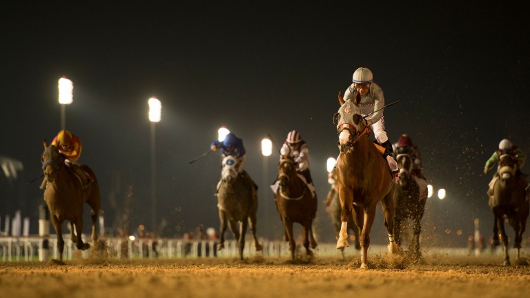 California Chrome romps to victory in the Dubai World Cup, one of seven top-level successes on his CV
