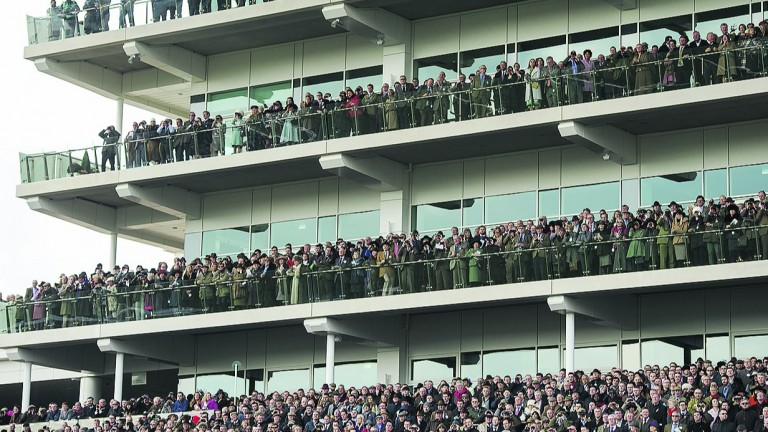 Cheltenham, where jump racing has centre stage to itself this weekend