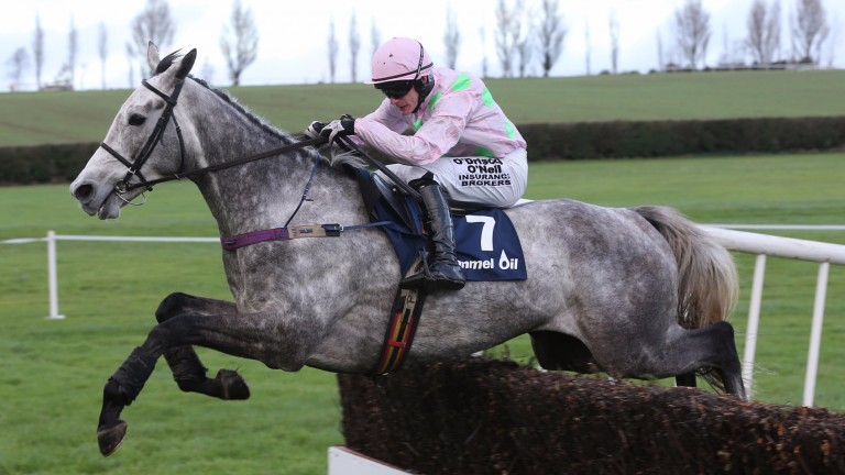 Champagne Fever: could bid to repeat his 2014 victory in the Clonmel Oil Chase
