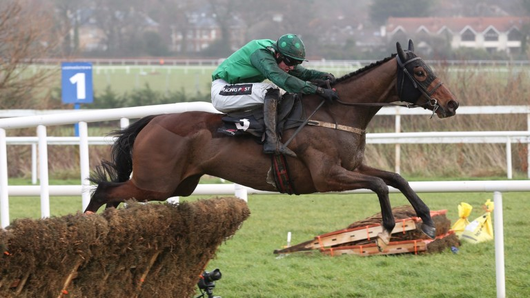 Footpad: starts his chasing career under Daryl Jacob at Navan