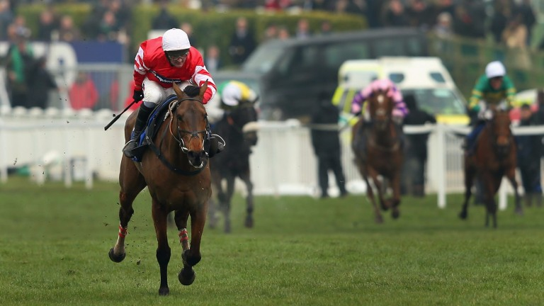 Coneygree: will be aimed at either Aintree or Punchestown this spring